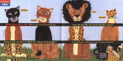 wildcatspuzzle